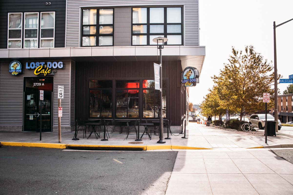Lost Dog Cafe - Dunn Loring (@DunnLo)   Twitter