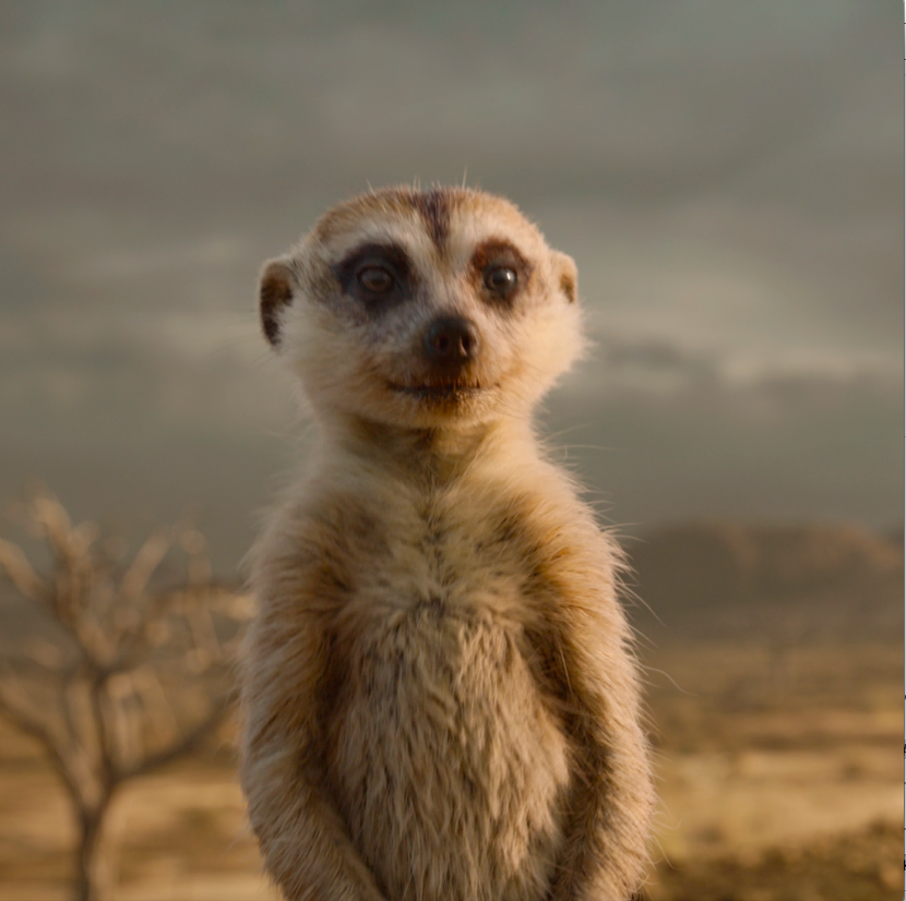 Watch as #Timon cordially invites you to the 3D movie event of the year. Dont miss #TheLionKing: bit.ly/LnKngTix