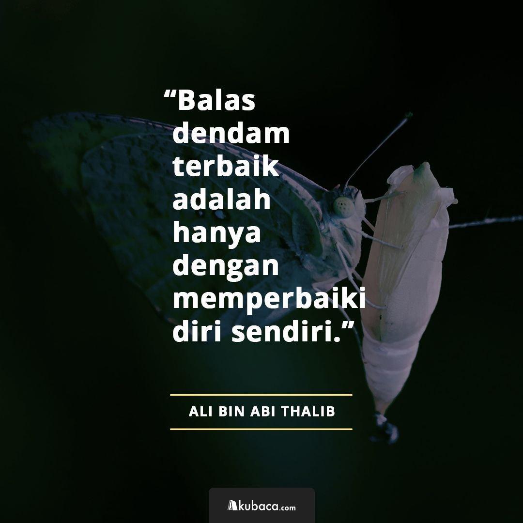 Alibinabithalib Hashtag On Twitter