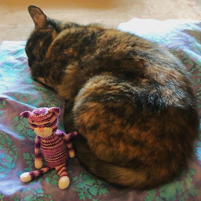 Cat Princess Amigurumi Pattern | Stuff The Body | 640x640