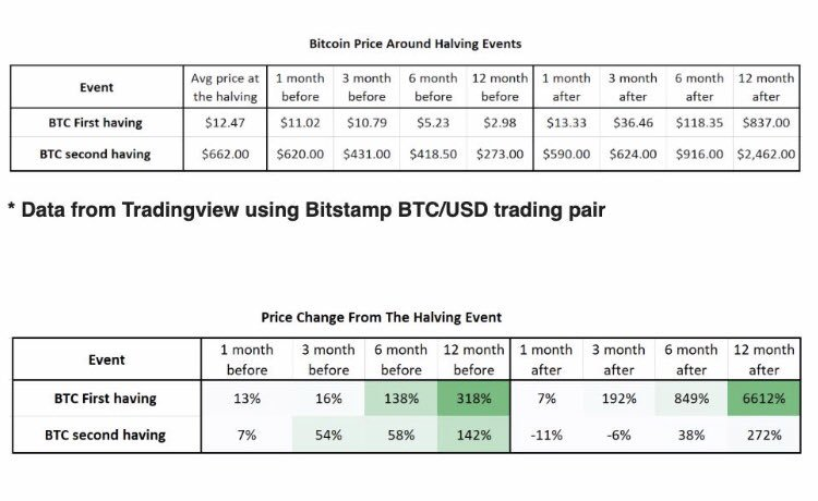 Bitcoin's Price Around the Halving. (Source: Token Daily Capital)