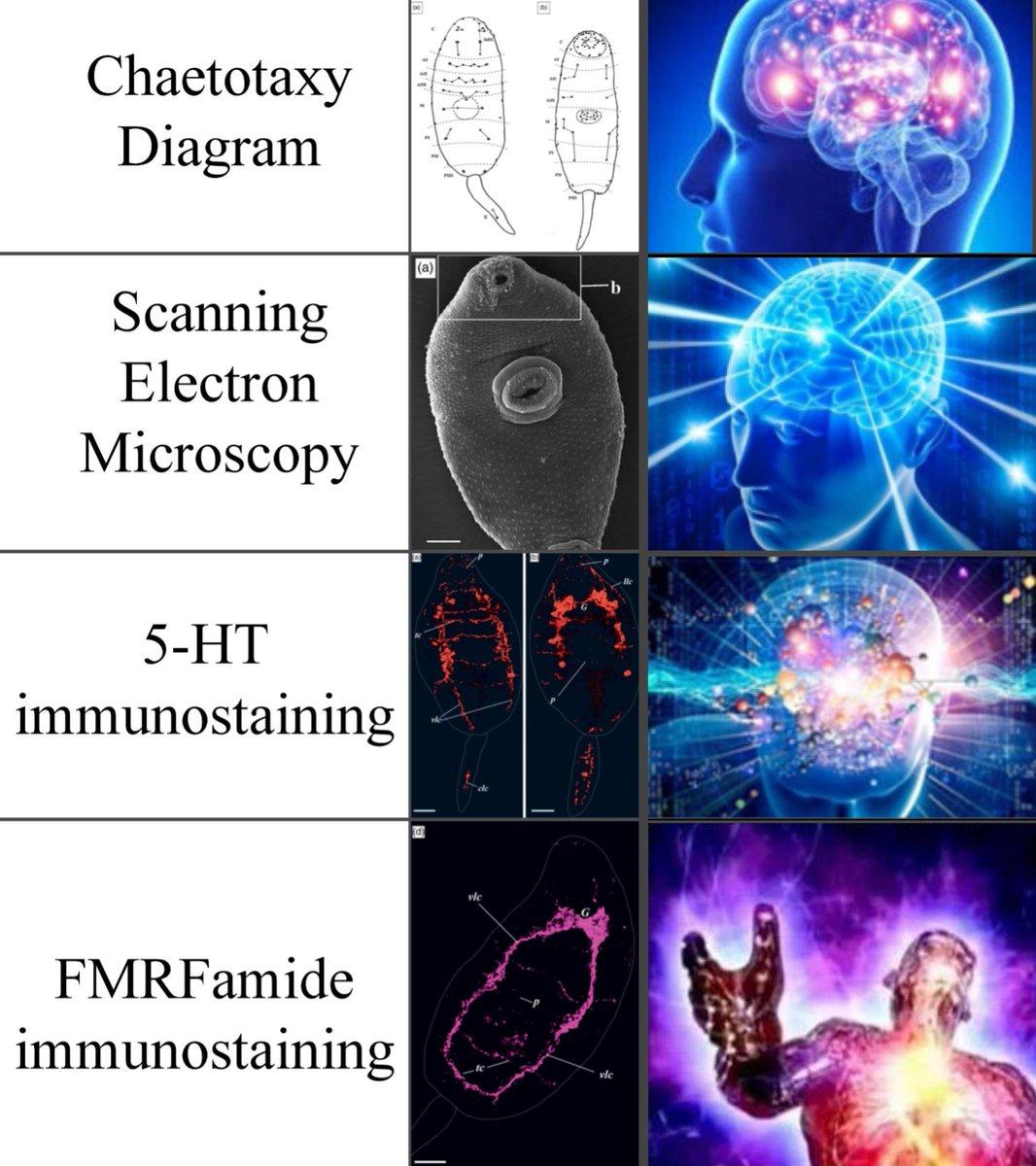 научно методическое