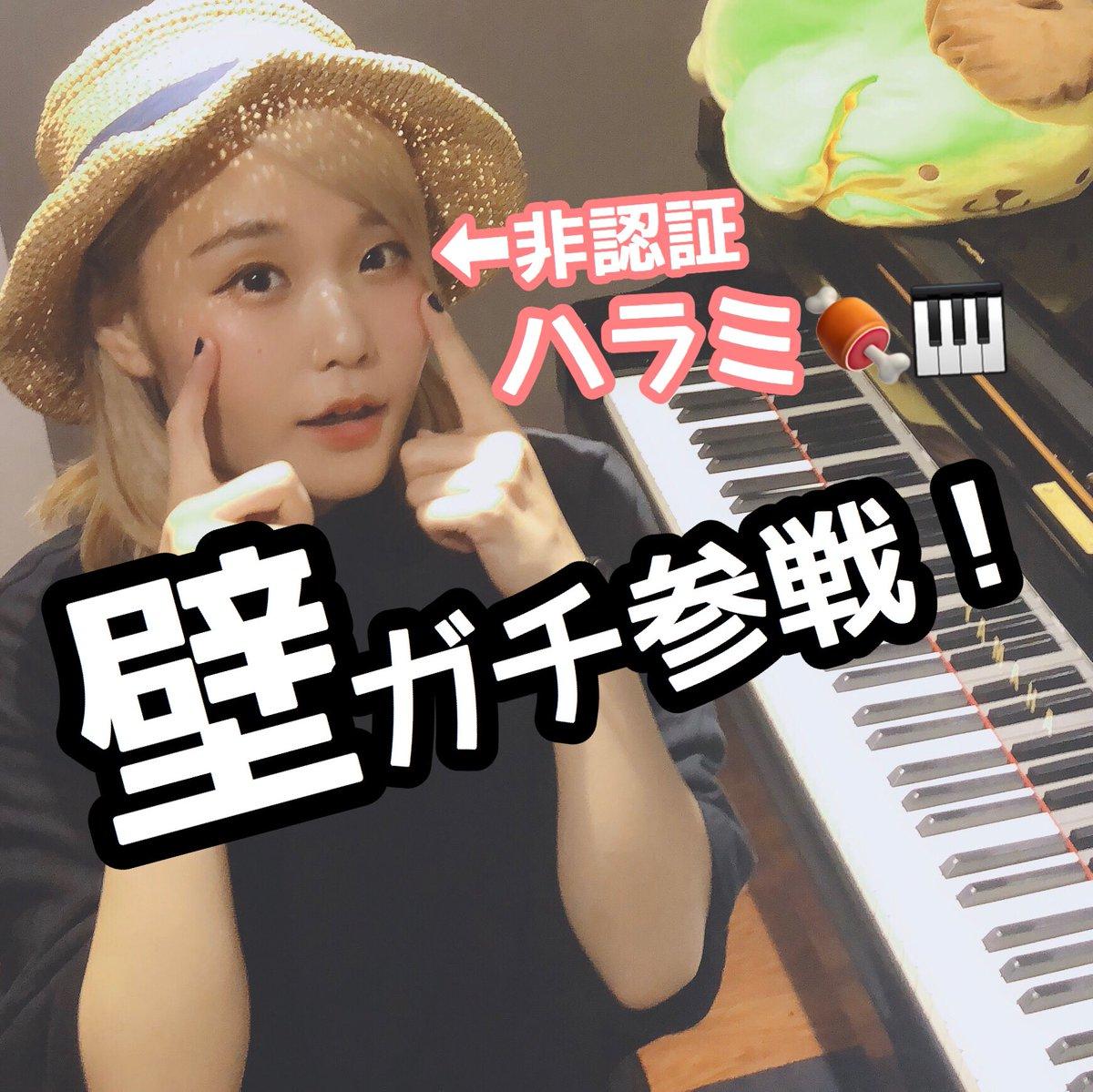ピアノ ハラミ ちゃん