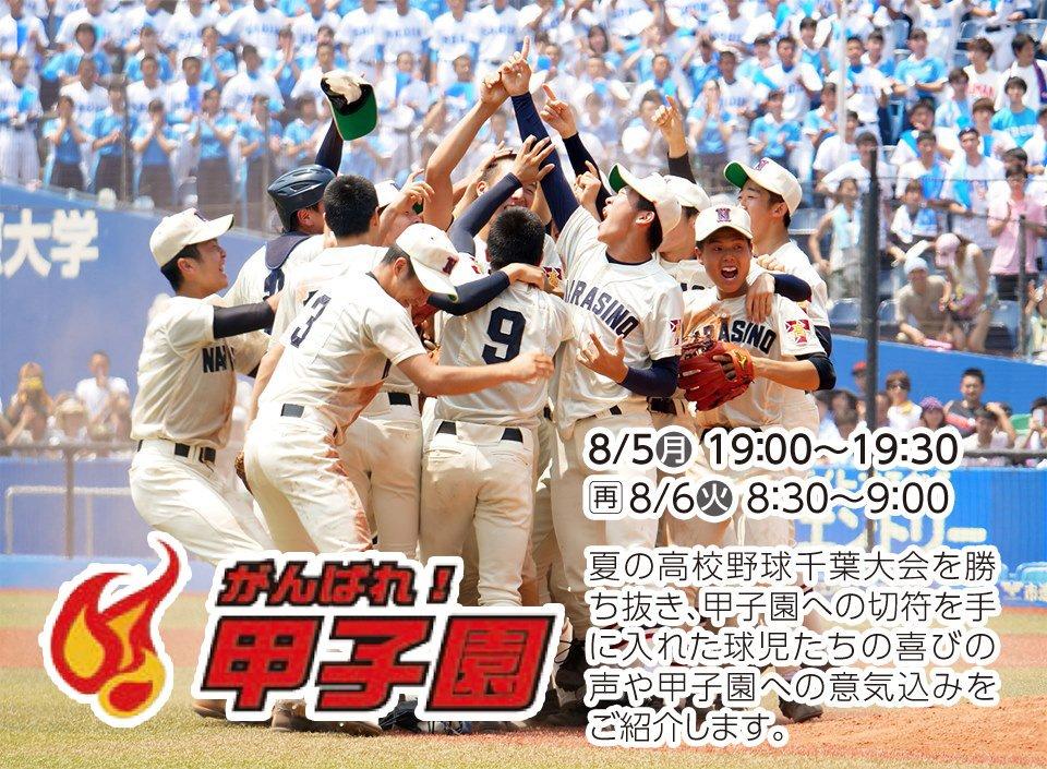 2019 高校 千葉 テレビ 野球