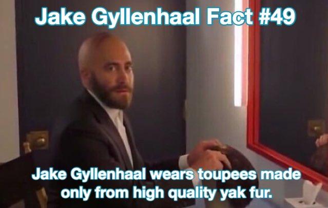 jake gyllenhaal facts (@GyllenhaalFacts) on Twitter photo 02/08/2019 13:18:17