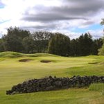 Image for the Tweet beginning: Pot bunkers, linksy turf and