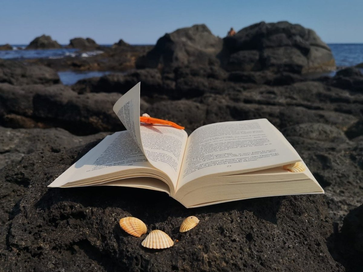 Aria di mare Vento di ponente Leggo un libro  E distraggo la mente! . . . #libriemare #sharewhatyoulove  @lovby_social #leggeremare #book #sea #leggereoltrelerighe  #leggereoltre #leggeresottoilsole  #conchiglia #stellamarina #scogli  #seashell #starfish