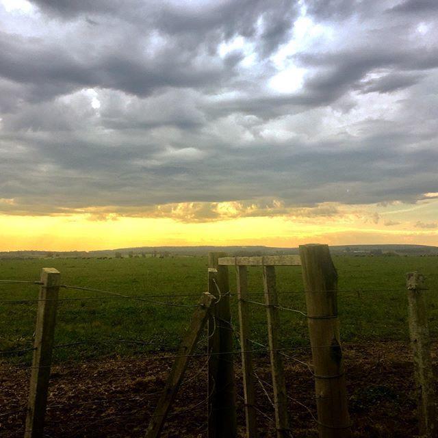 La pradera bajo tormenta. Visita técnica a chacra en Depto. de Canelones. #geopaisaje #Uruguay #paisajismo