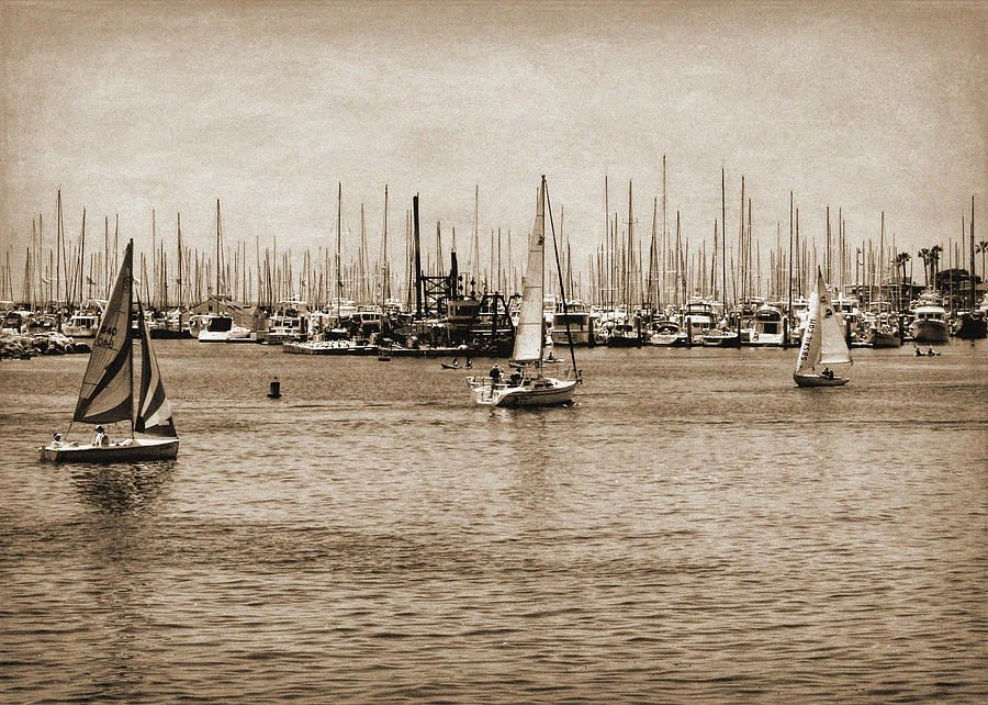 Santa Barbara #Harbor Sepia https://buff.ly/32HSqjh  #California #SantaBarbara #boats #sailboats #sailing Quality Fine #Art #Prints and #Products