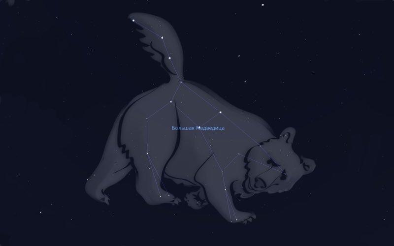 картинки о том как появилась большая медведица добавляет