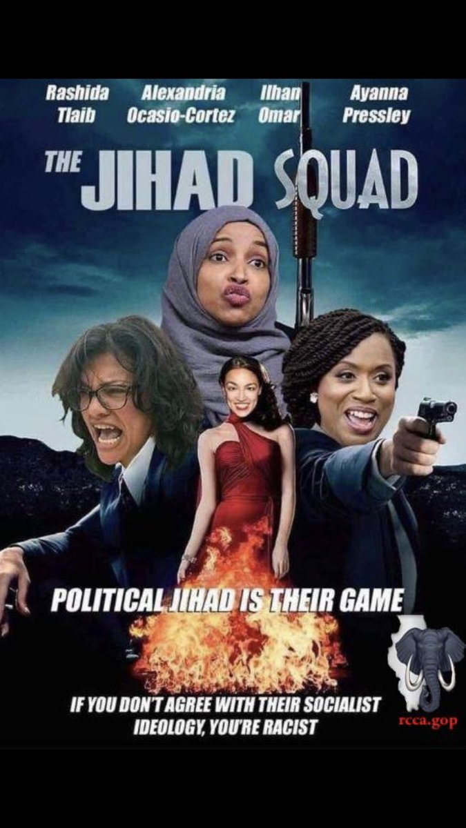 Illinois GOP Group Apologizes After Reportedly Posting Bigoted 'Jihad Squad' Meme