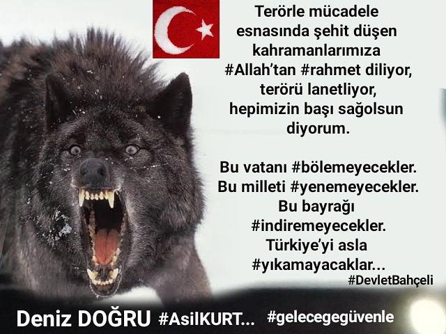 Terörle mücadele esnasında şehit düşen kahramanlarımıza #Allah'tan #rahmet diliyor, terörü lanetliyor, hepimizin başı sağolsun diyorum.  Bu vatanı #bölemeyecekler. Bu milleti #yenemeyecekler. Bu bayrağı #indiremeyecekler. Türkiye'yi asla #yıkamayacaklar.  #DenizDOĞRU  #AsilKURT