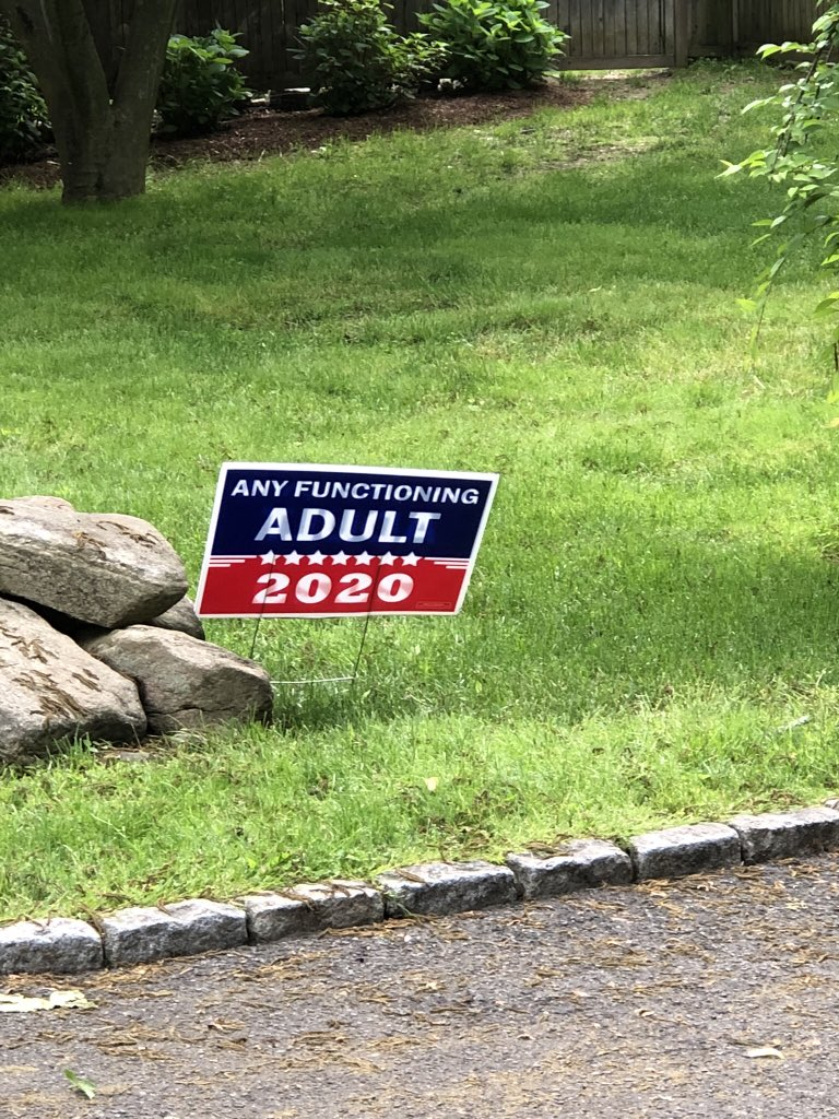 This is my neighbor's lawn sign in CT. #VoteBlueToSaveAmerica #VoteThemOut #BlueWave2020 #VoteThemAllOut #BlueWave2020 <br>http://pic.twitter.com/4I62FdKNHU
