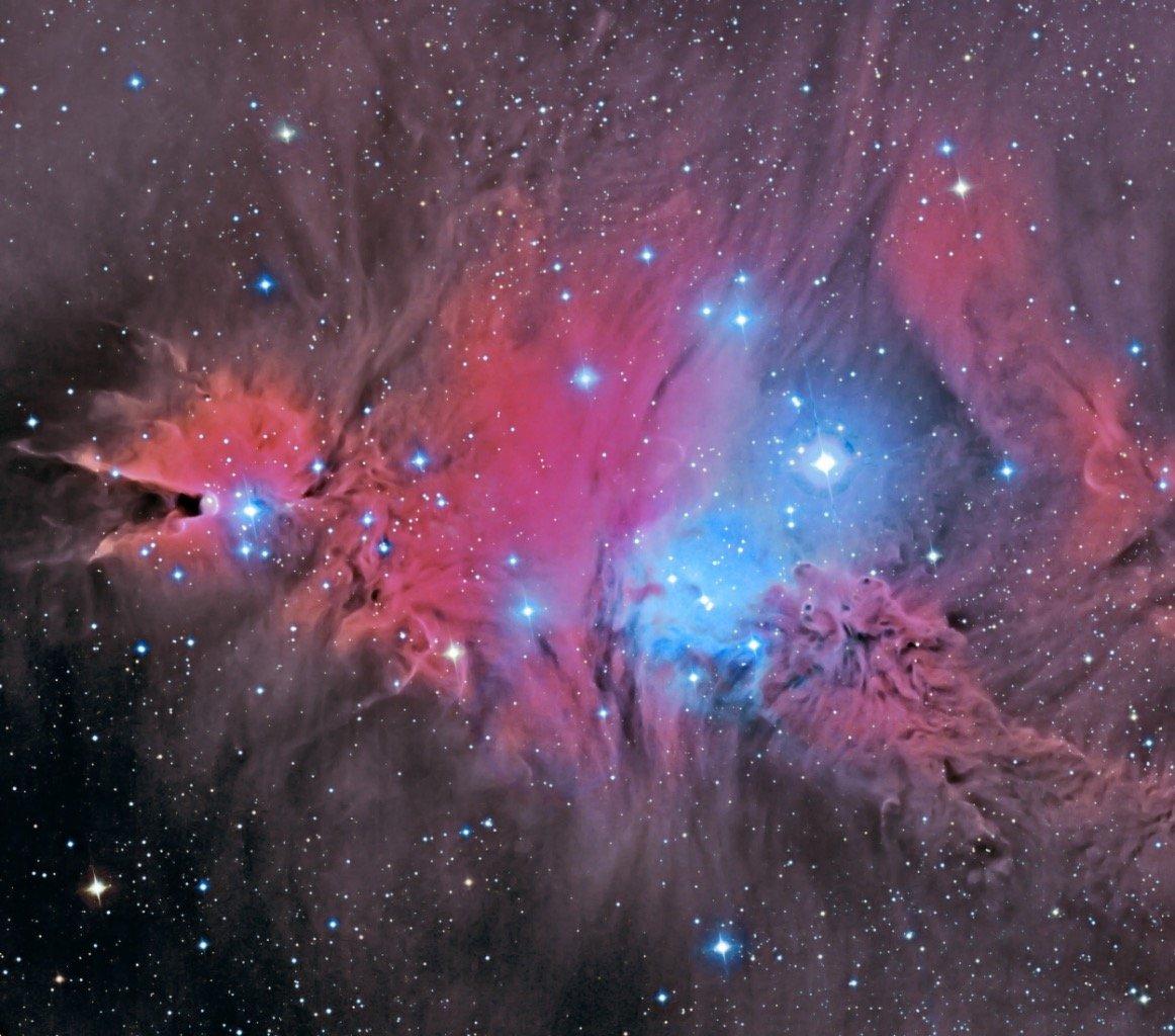 """Na vizinhança da Nebulosa do Cone 😍.As regiões vermelhas são devidas à emissão do hidrogênio (linha """"Hα""""), as regiões azuis à luz de estrelas refletida pela poeira, e as regiões escuras a densas nuvens de poeira.In the Vicinity of the Cone Nebula.(c) Dieter Willasch"""