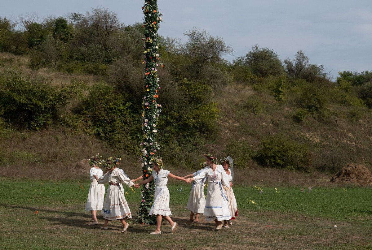 During the 'round and round the mulberry bush scene', I kept hoping they'd play either 'stick in the mud' or 'musical chairs' next. #disappointed ☹ #MIDSOMMAR