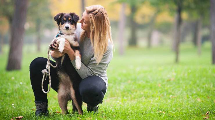 Only 10 min playing with pets can decrease your stress read full article https://fitnessproguru.com/health-issues/only-10-min-playing-with-pets-can-decrease-your-stress/… #fitness #fitnessmotivation #FitnessGoals #fitnessedu #fitnessmodels #fitnessjourney #health #HealthTips #healthylifestyle #healthy #Healthcare #pets #petsitter
