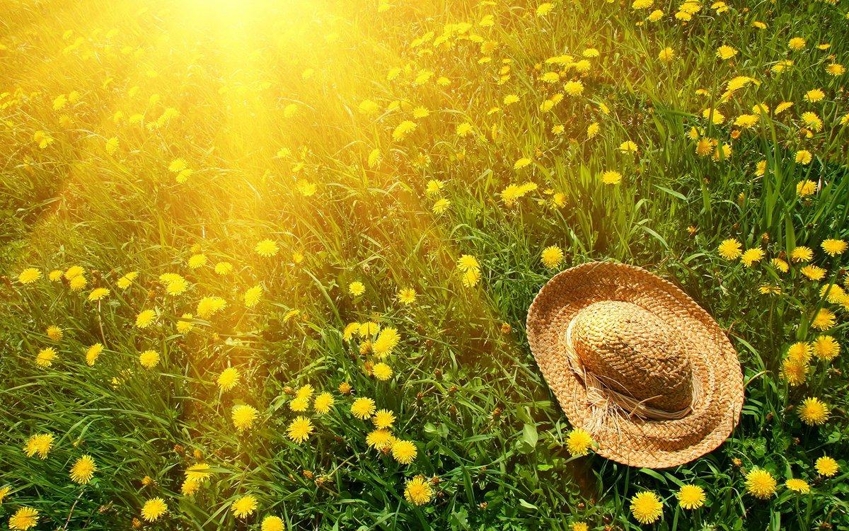 Погода в картинках лето