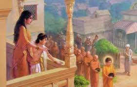 Elephant Journal, Review by Todd Mayville, One of the best books Ive read this year. BUDDHAS WIFE - Yasodhara 📚 tinyurl.com/zyrpsjt 📚 #Buddha #son #Yasodhara #romance #India #women #family #history #tw4rw @rdrpub