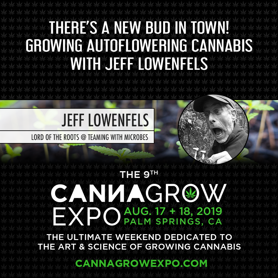 Learn about the benefits of growing autoflowering #cannabis at the 9th #CannaGrowExpo in Palm Springs, CA.  Attend 35+ other sessions, network with growers from across the globe, explore our 125+ booth expo hall, and more.  Register today and save $100! https://CannaGrowExpo.com