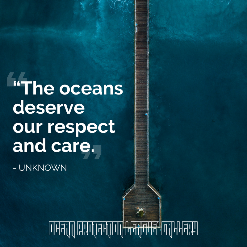 The oceans deserve our respect and care. - UNKNOWN #OceanProtectionLeague #SaveTheOcean #ocean #beach #nature #sea #travel #love #sky #water