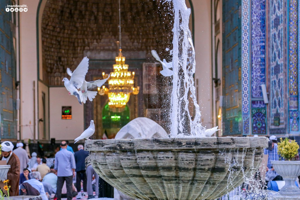 A lovely and peaceful afternoon in the holy shrine of #ImamReza peace be upon him.  Enjoy the scene.  #MondayMotivation <br>http://pic.twitter.com/6Qq1Qw4V9t
