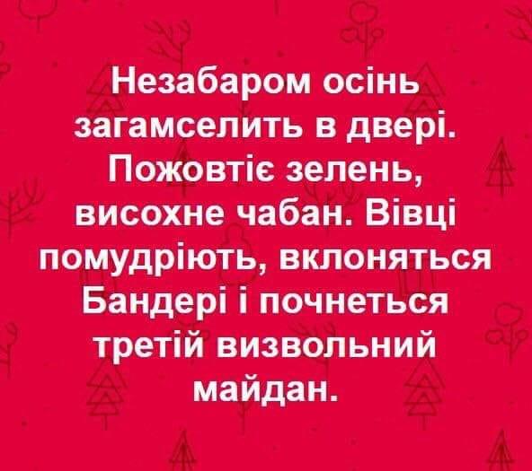 Stepan Klimov (@stepan_klimov) on Twitter photo 22/07/2019 13:08:23