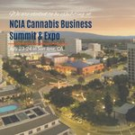 Join us at the NCIA Cannabis Business Summit & Expo in San Jose, CA! We're eager & excited for the chance to connect & discuss all things #CBD, #Hemp, #Cannabis, & more with others. #CannaBizSummit #NCIA #SanJose #CYTOlife #Phytocannabinoids #CBDhealth #CBDbenefits #CBDscience