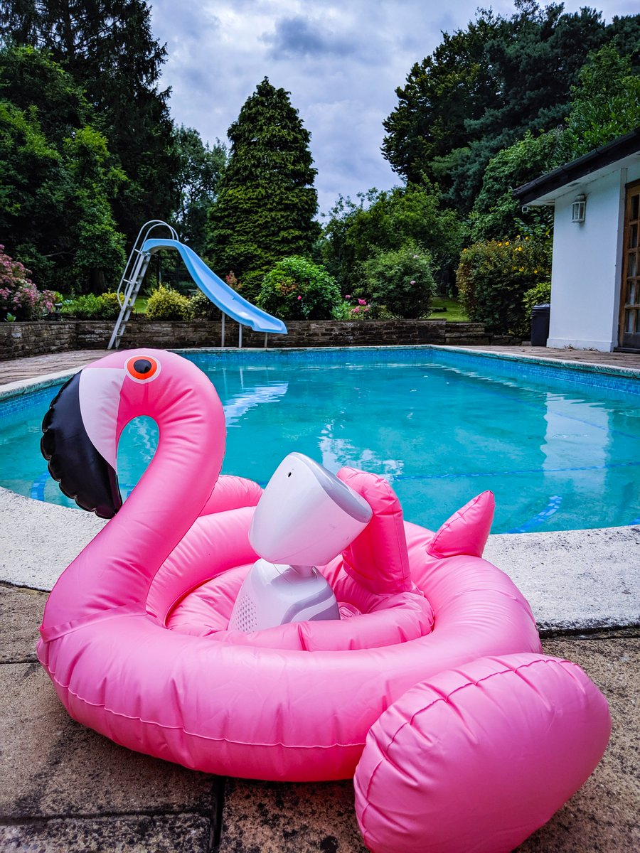 Pool party? Lets (flamin)go! ⛲🤽🍉☀️