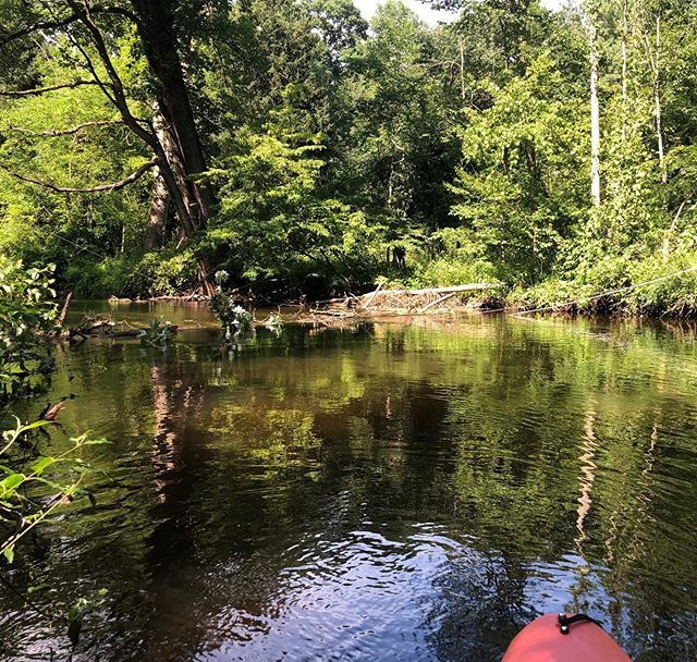 I guess it wasn't the best idea to go kayaking the day after a storm. We had to call 911, because of the downed power lines in the river and wait for the fire department to give us the all clear. #isiahthomas #kayakingdangers https://ift.tt/2M4y91j