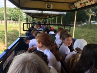 Our Y6 travelling in style at @ZSLWhipsnadeZoo