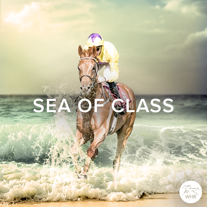 Remembering  SEA OF CLASS    Our condolences go out to everyone associated with her.<br>http://pic.twitter.com/utNztapvzT