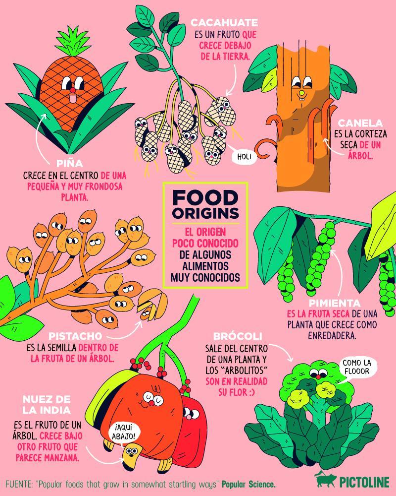 El origen poco conocido de algunos alimentos muy conocidos 🥜🍍🥦🤯