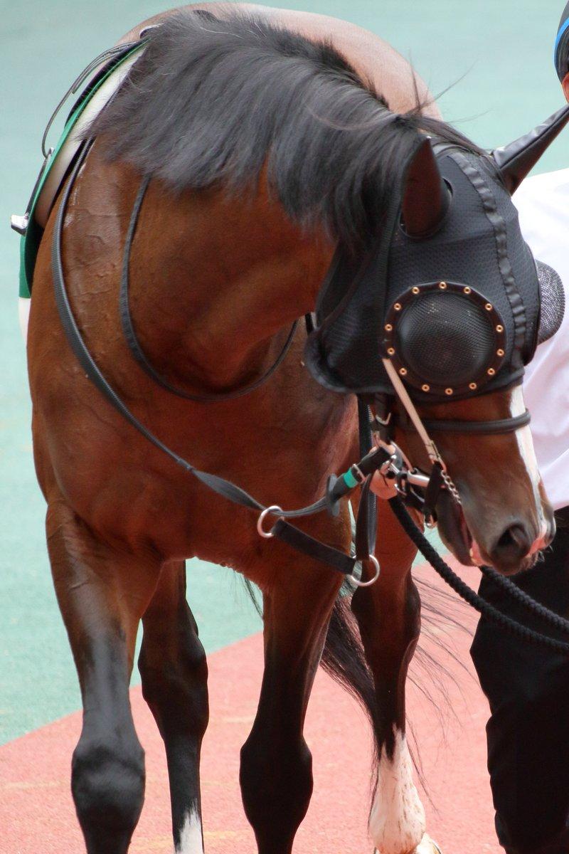 7月21日 中京記念GⅢ カテドラル 川田将雅騎手  曳いてるの大下さんかな?