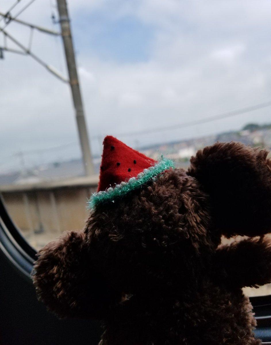 いざ!新潟へ!! チェブラーシカワールド with Creema」@新潟伊勢丹が7月24日(水)より。 1品限りのレア商品も多数ございます。遊びに来てね! #新潟伊勢丹チェブラーシカ2019  #新潟 #伊勢丹 #チェブラーシカ