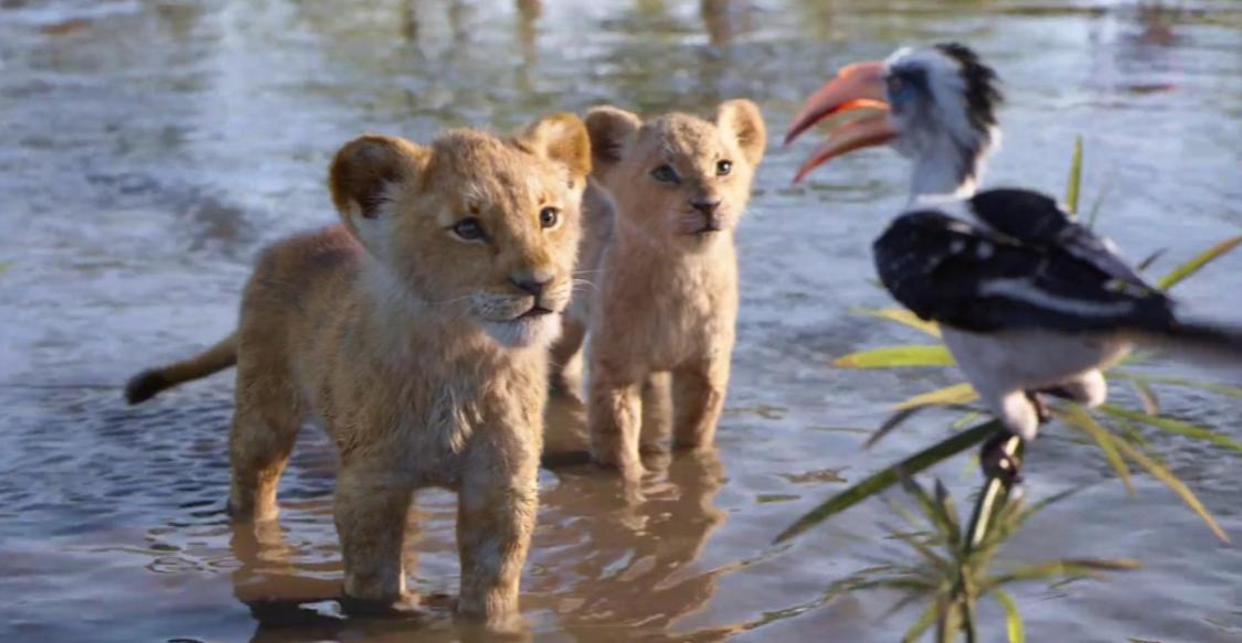What do the names mean in The Lion King? Exploring the deeper meaning! @disneylionking #TheLionKing  http://hitc.com/en-gb/2019/07/23/simba-in-swahili-the-lion-king-name-meanings-disney/…