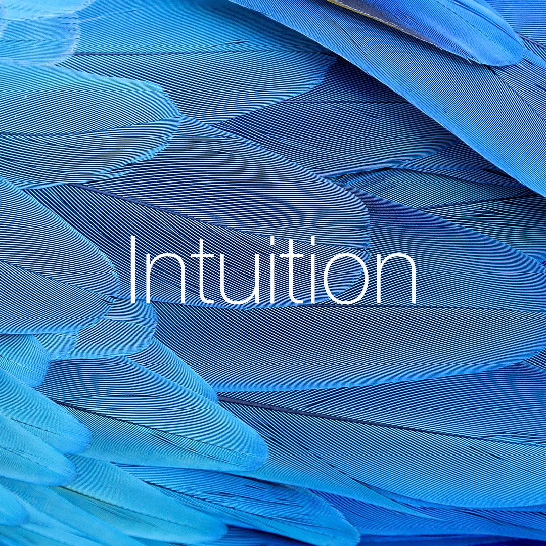 Intuition – our inner wisdom and guidance #intuition #values #quintessence #aboveandbeyond