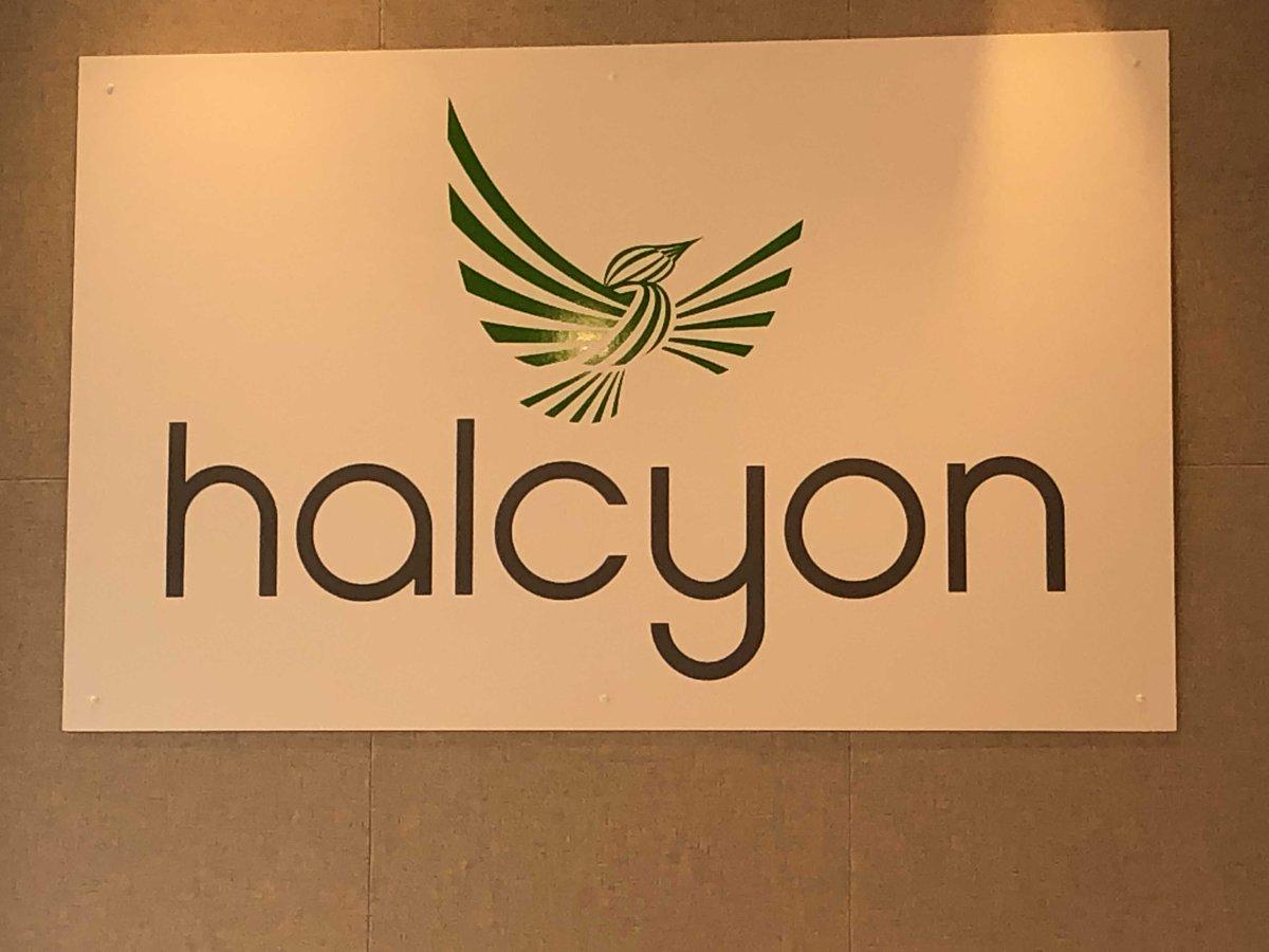 Halcyon (@HalcyonInspires) | Twitter