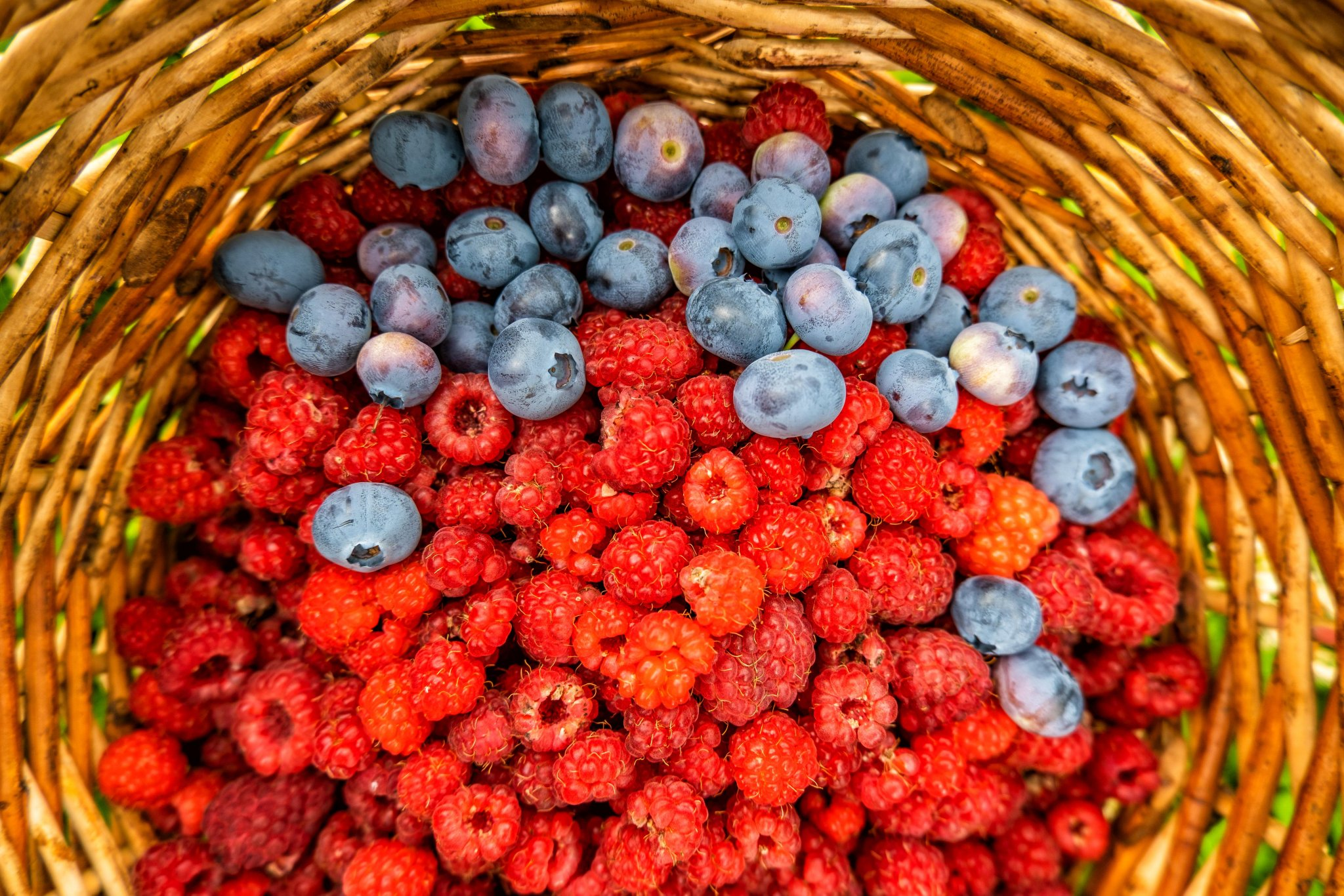 как фотографировать ягоды красивейшие