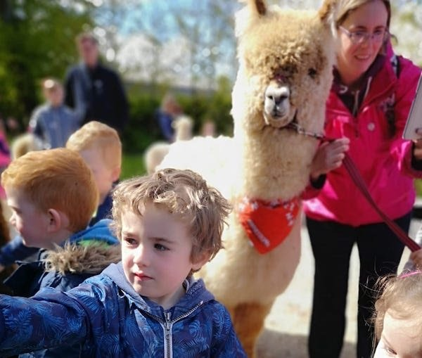 Looking for #unique idea's for an #unforgetable #birthdayparty for your child? Check out @farmyardschool's mobile #PetFarm & #Zoo. For more info, please visit: http://www.farmyardschoolyard.ie . #bunnycorner #happykids #happyanimals #Clare @ClareTourism @ClareCoCo @farmyardschool