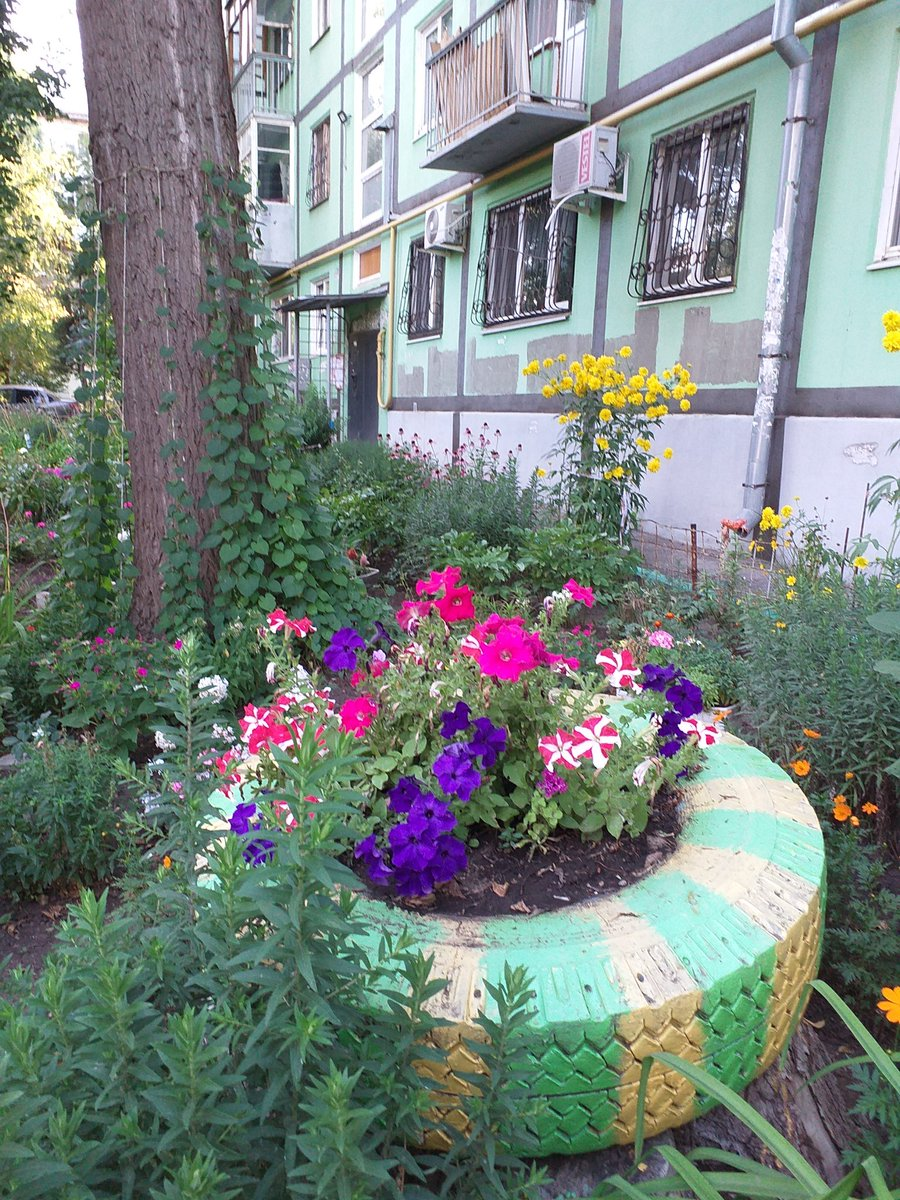 Подарки, сайт цветоводов любителей