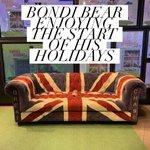 Image for the Tweet beginning: Bondi the global bear at