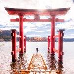 Image for the Tweet beginning: Hakone Shinto Shrine Photo shot by