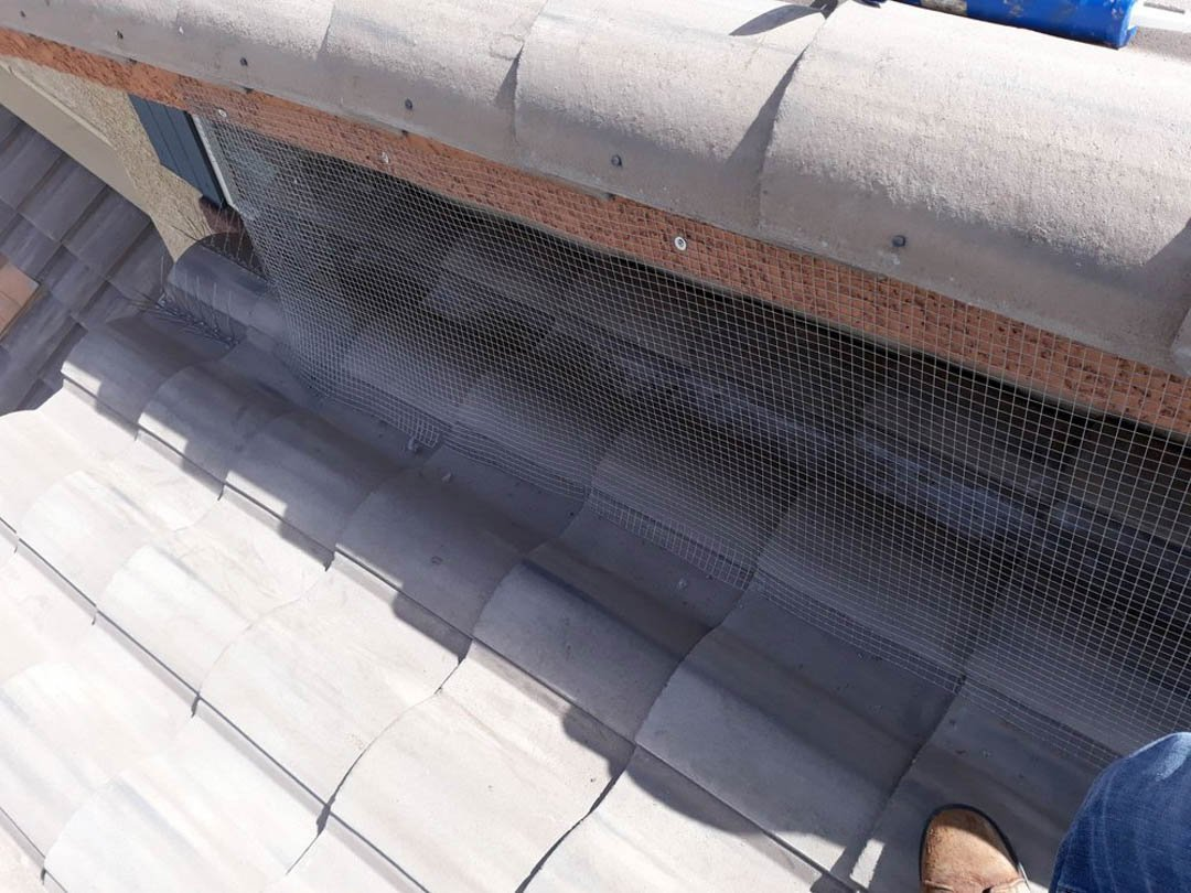 #PigeonControlServices at #PrestigePigeonService. At Prestige Pigeon Service, ourpigeon control servicesincludepigeon clean up, blocking crevices or habitable spots, and solar wrapping  #PigeonRemoval #PigeonRemovalService #PigeonRemovalCompany #Nor ... http://bit.ly/2lyiX1h