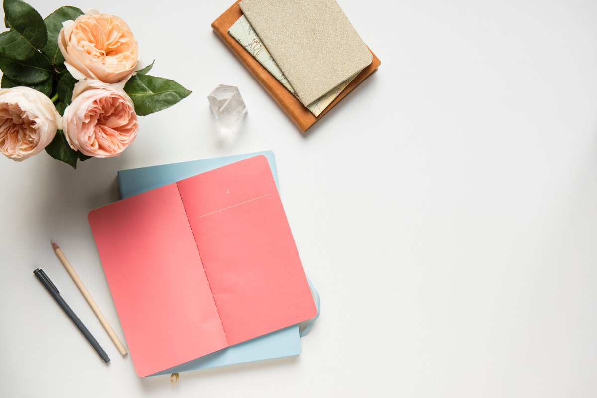 ebook studium und lehre nach bologna perspektiven der