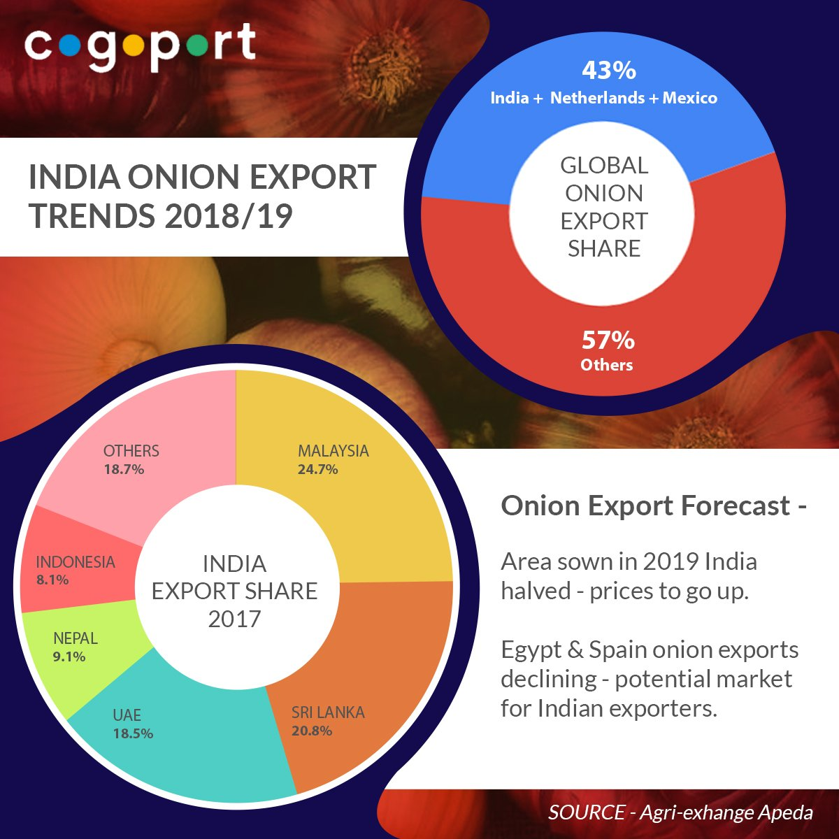 List Of Onion Importers In Malaysia