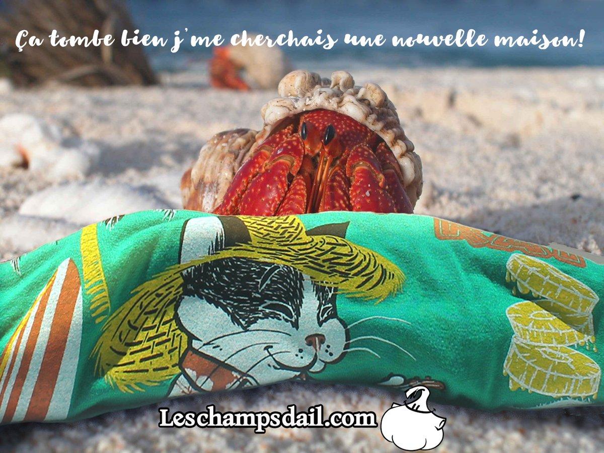 Pour hommes  https:// leschampsdail.com/boutique/fr/ch andails-pour-hommes/kiti-tiki-kat-p81c20/  …  #tshirt #tshirts #plage #Ete2019 #beach #tiki #ukulele #chat #cat #Vacances #tropical<br>http://pic.twitter.com/CooBppbRNL