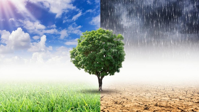 #TechNews #25luglio - Grazie allintelligenza artificiale è possibile diminuire lemissione di CO2 e combattere i #cambiamenticlimatici che mettono in pericolo il nostro futuro fastweb.it/web-e-digital/… #ClimateChange #clima #AI