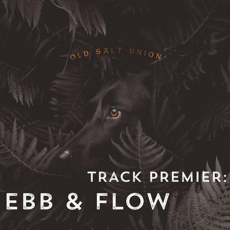 Brand new track EBB & FLOW premiering on @bluegrasstoday! bluegrasstoday.com/track-premiere…