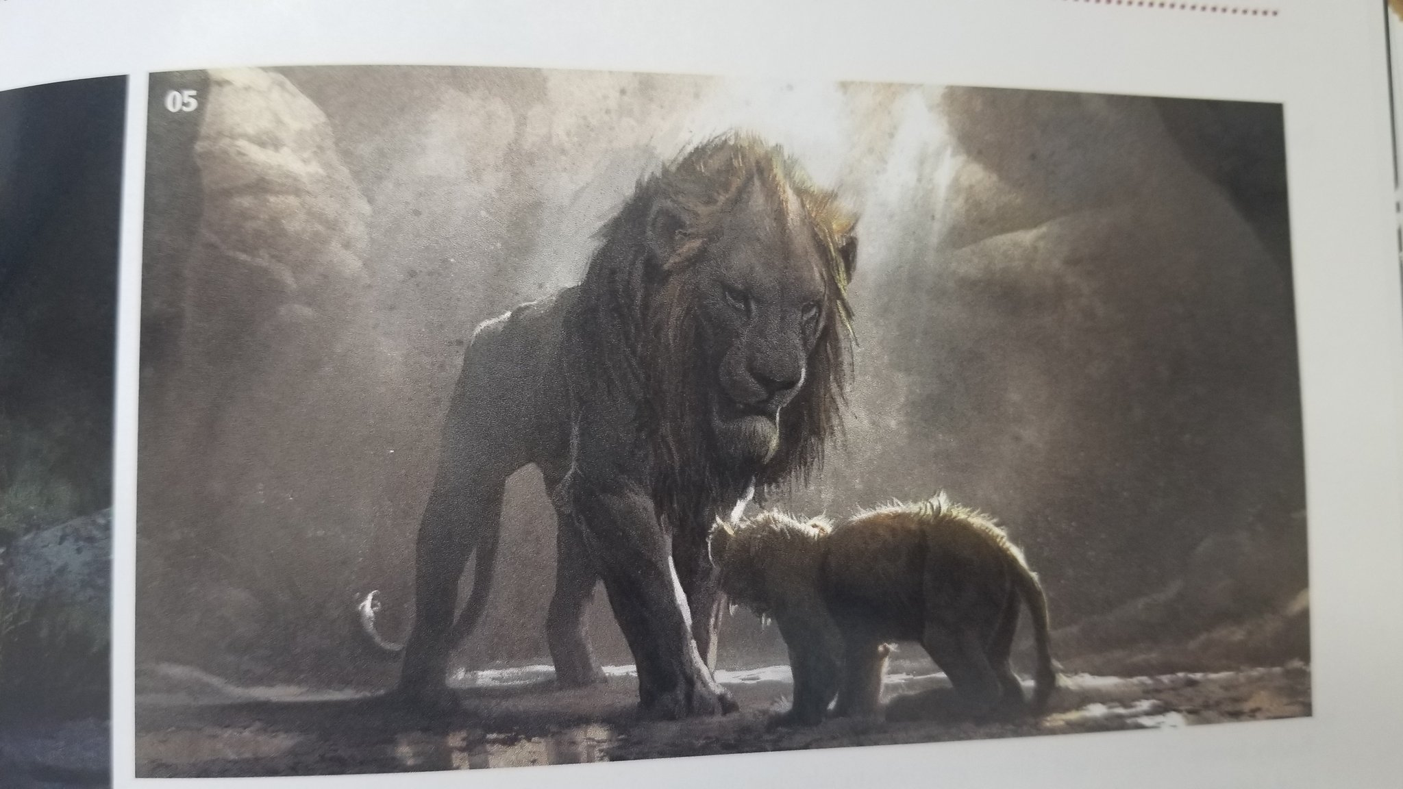Tartii New Start On Twitter I Think A Majority Of Us Agree That The Lion King Remake Lacked A Lot Of Emotion And Heart However Look At This Concept Art In A