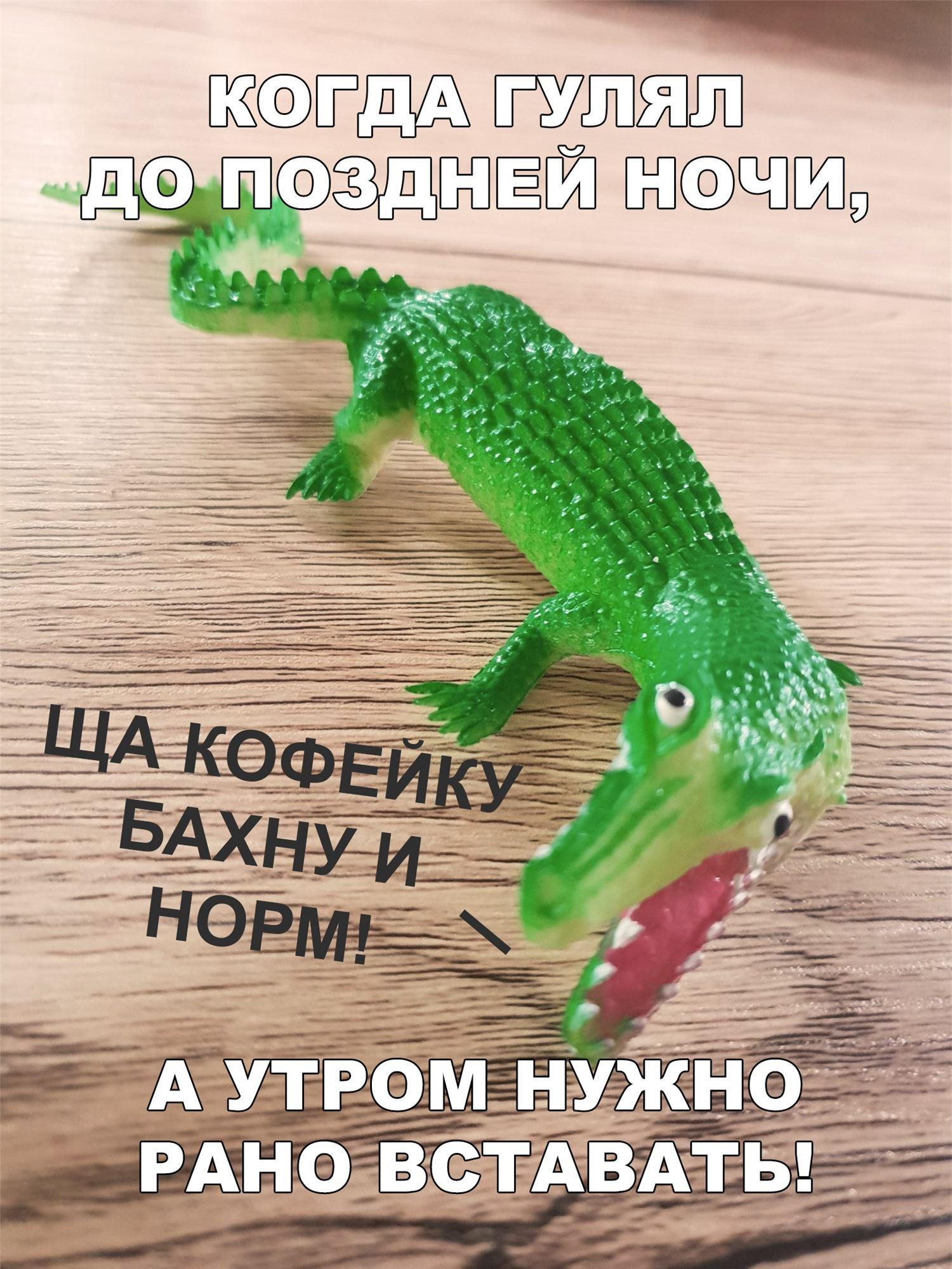 подруга картинка с крокодилом сейчас кофейку бахну и норм изготавливаются